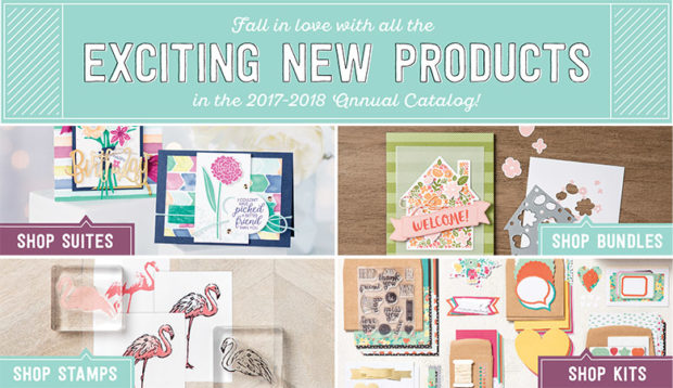 Exciting new products!